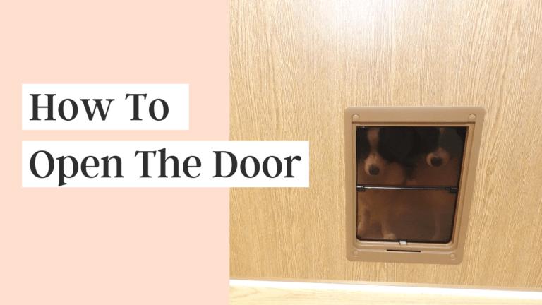 How to Open The Door